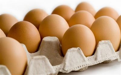 Eggs_2450359b